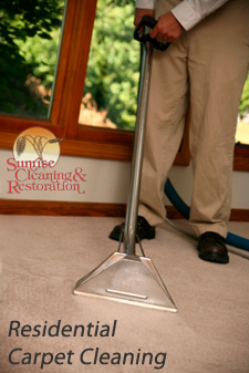 Residential Carpet Cleaning Idaho Falls