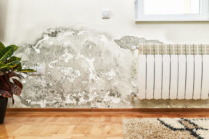 Mold caused by damp on a wall in modern house