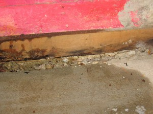 Water Damaged Basement in Idaho Falls