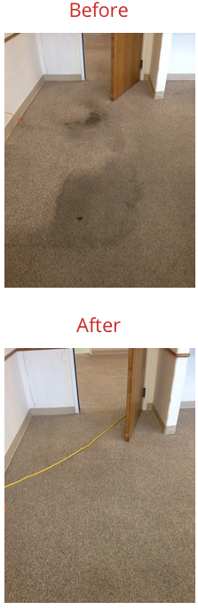 carpet cleaning in Idaho Falls before and after